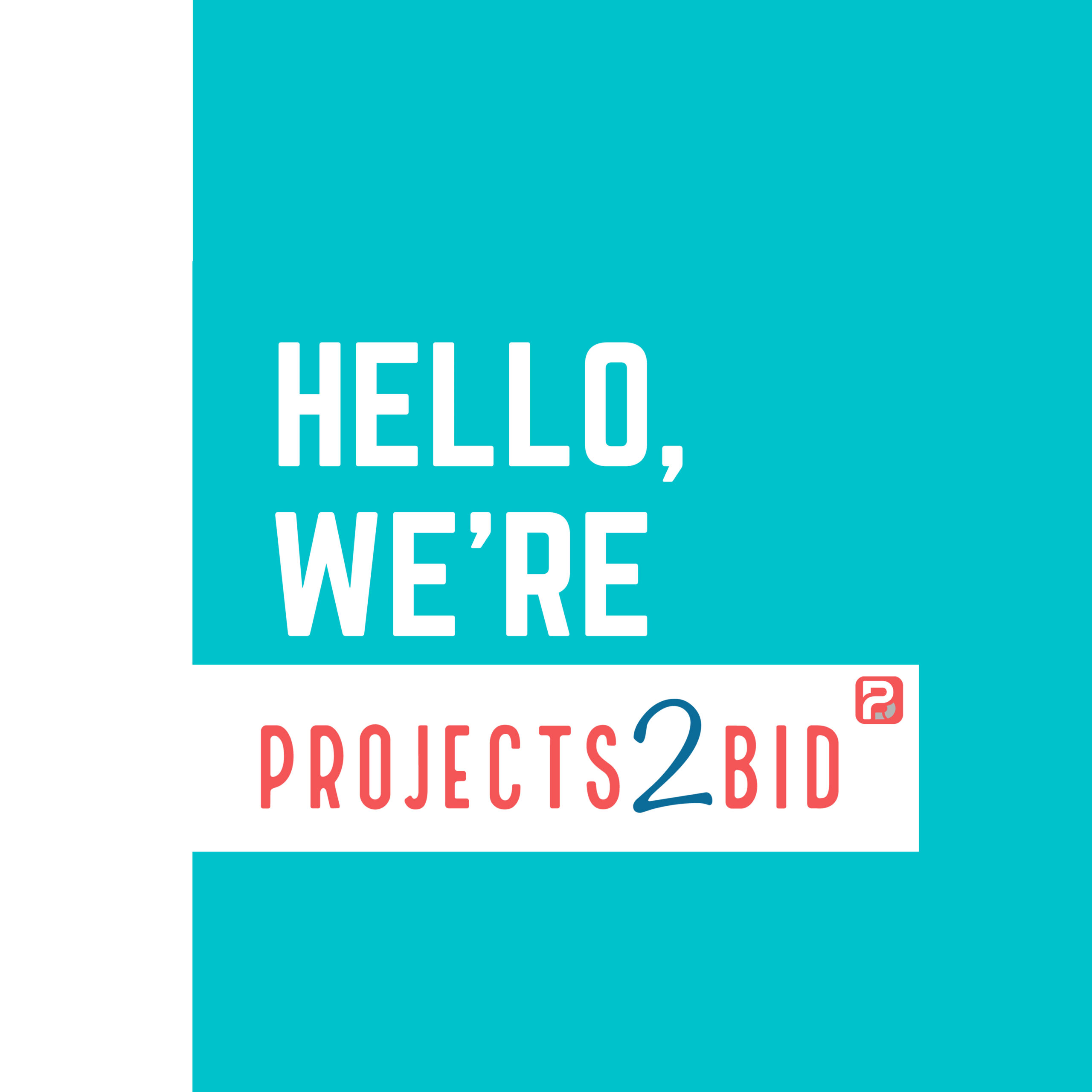 We are projects2bid